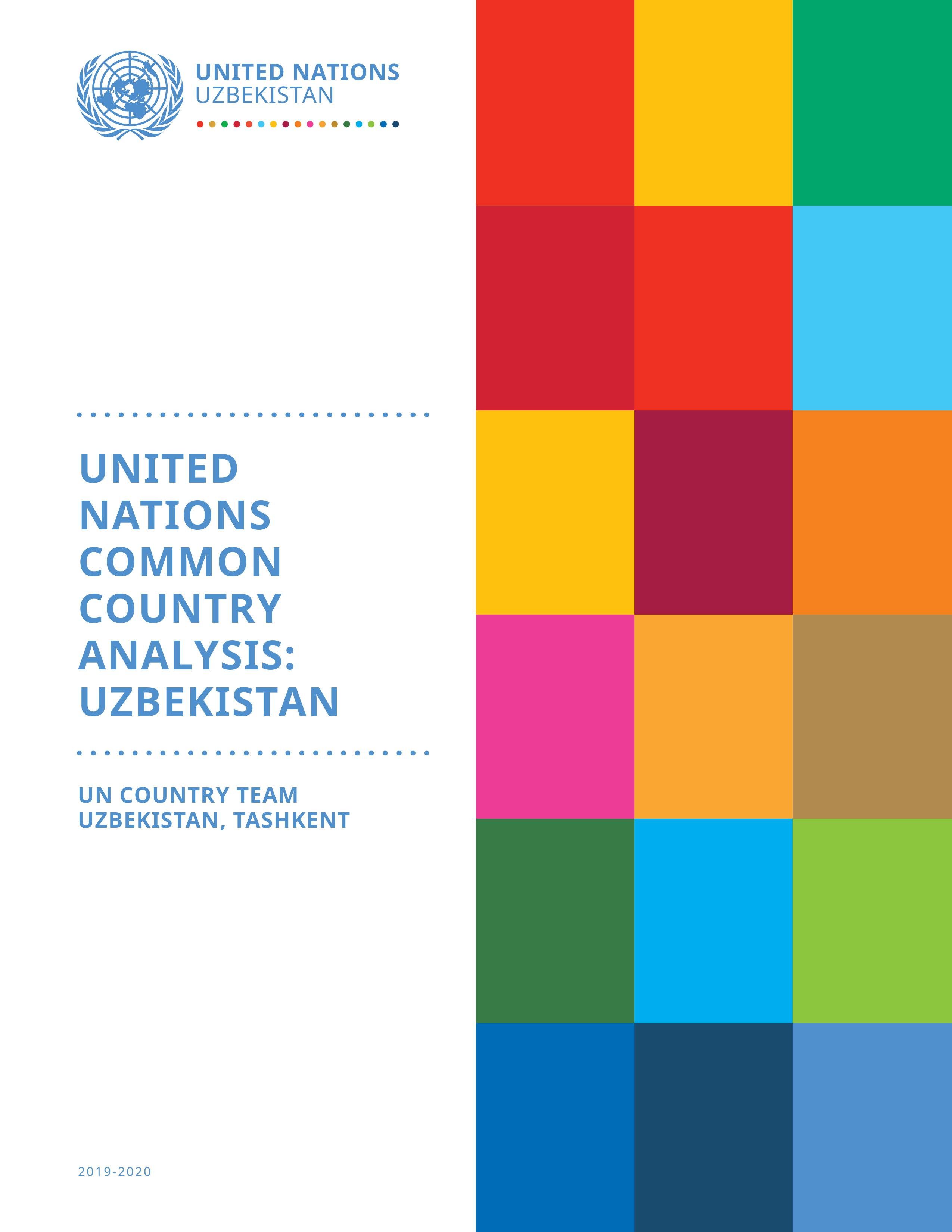 United Nations Common Country Analysis: Uzbekistan