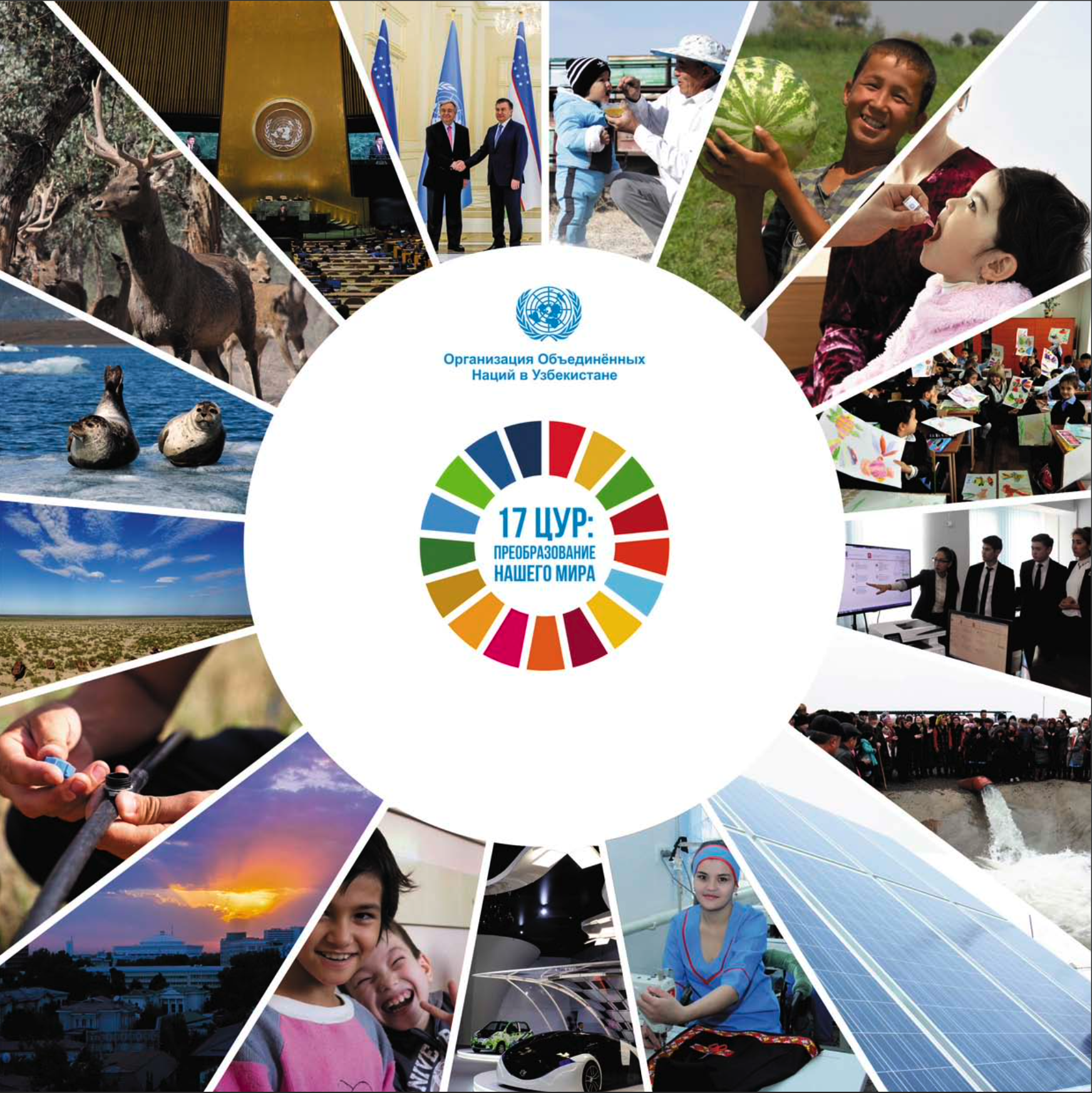 17 Sustainable Development Goals: Transforming Our World