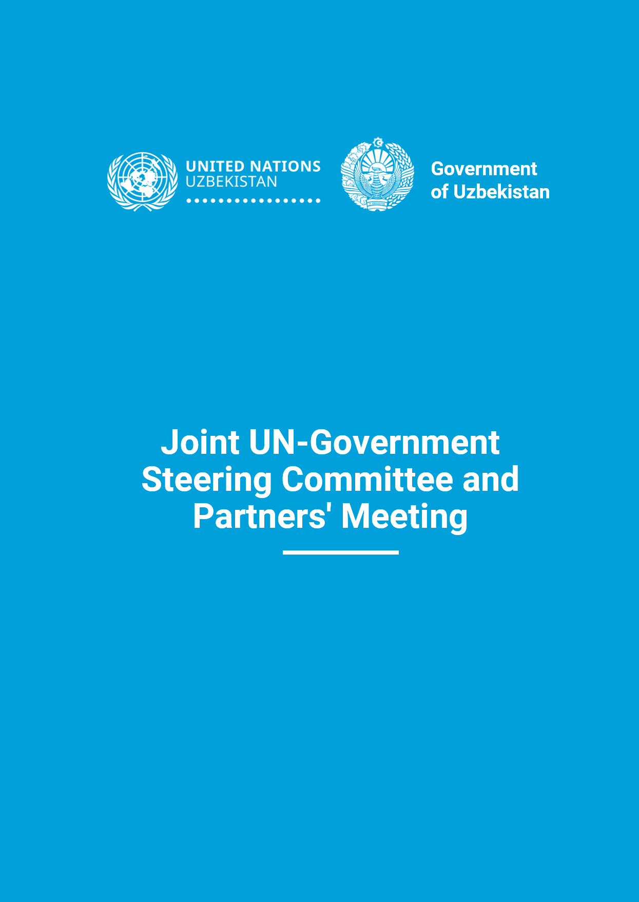 Joint UN-Government Steering Committee and Partners' Meeting